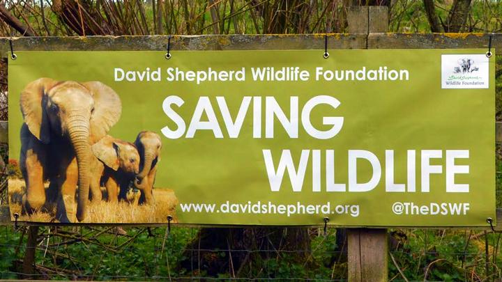 Free Charity PVC Banner