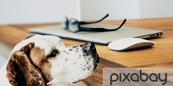 free stock images pixabay